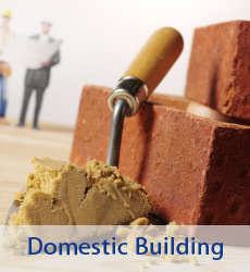 Domestic Building